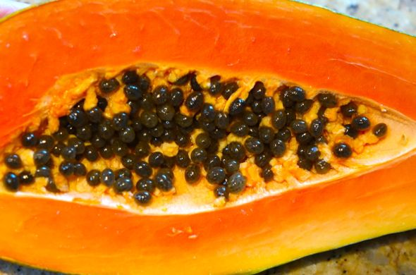 DSC01308 papaya seeds