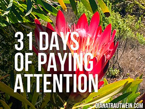 31 Days of Paying Attention